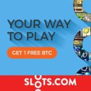 Slots Casino banner 250x250