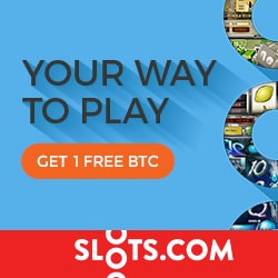 Slots.com 100% up to 1000 free chips bonus in bitcoins - Mobile Casino