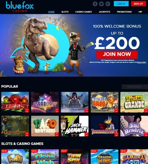 BlueFox Casino Review